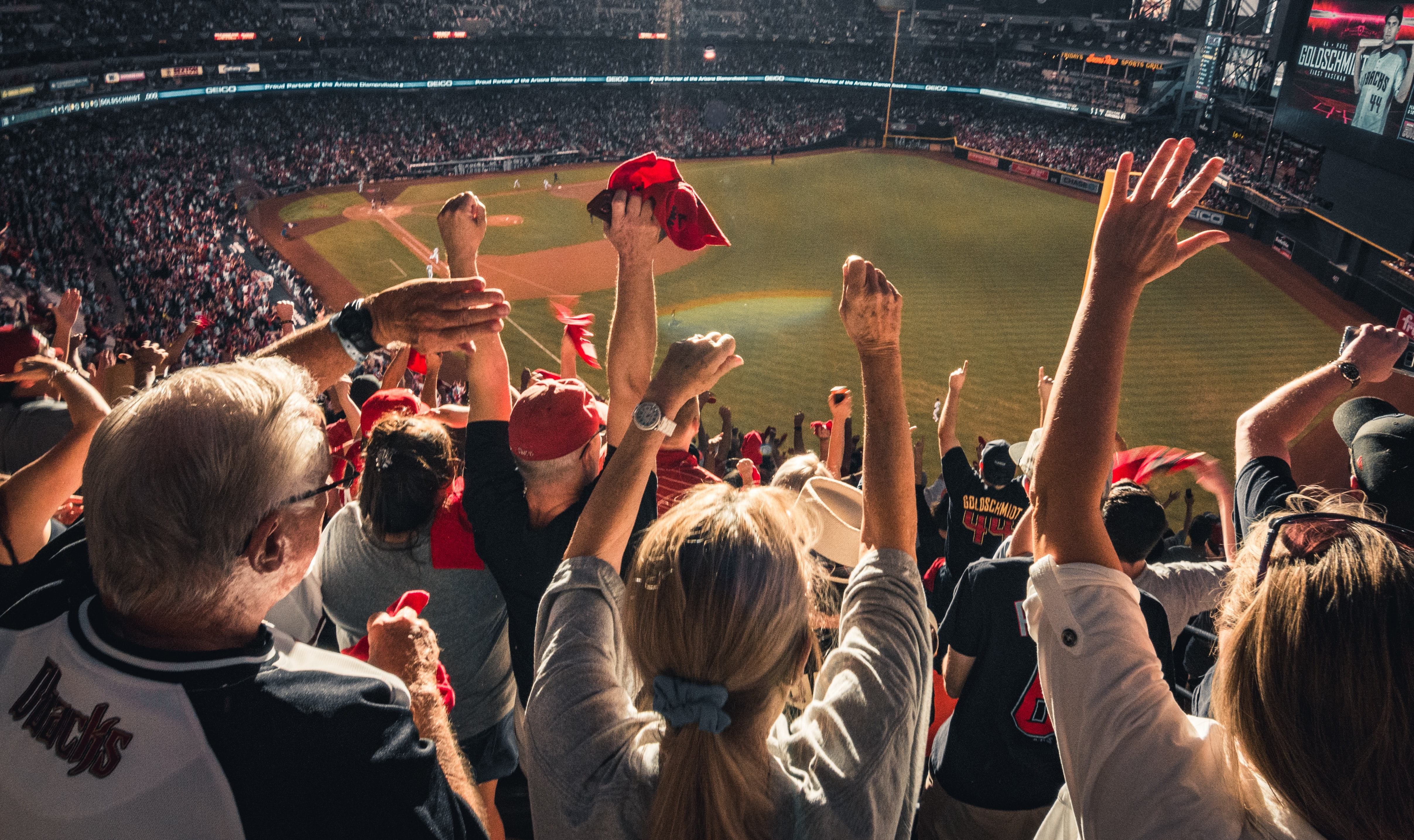 sports fans cheering at a game